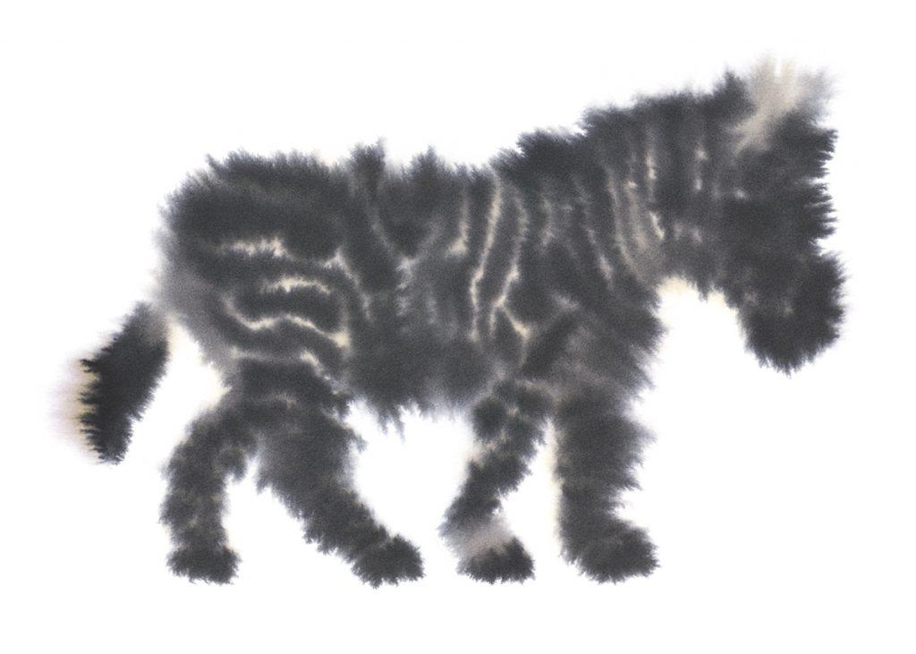 Zebra - Rop van Mierlo